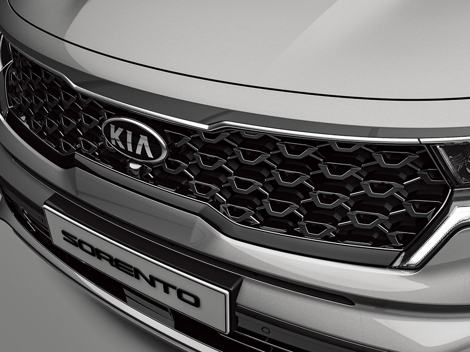 Radiator grill (Glossy black paint)