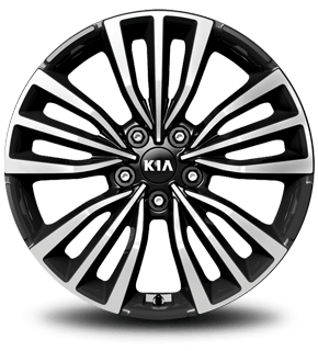 "18"" Alloy Wheel (B-type)"
