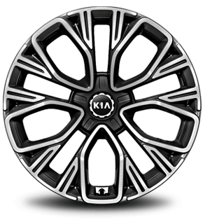"19"" Alloy Wheel (A-type)"