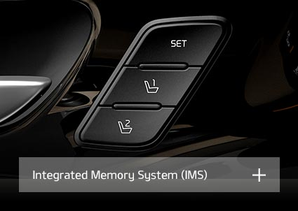 Integrated Memory System (IMS)
